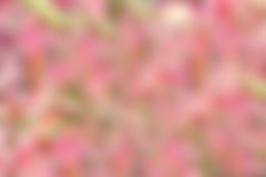 αφηρημένη θαμπάδα ανασκόπησ& Στοκ Εικόνες