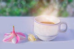 Αφηρημένη μαλακή θολωμένη και μαλακή εστίαση ένα φλιτζάνι του καφέ με το Plumeria, Frangipani, Michelia alba, Magnolia, λουλούδια Στοκ Φωτογραφία