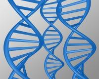 Αφηρημένη μπλε απεικόνιση DNA Στοκ Εικόνες