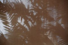 Αφηρημένη σκιά σκιών υποβάθρου του φύλλου φοινικών Στοκ εικόνες με δικαίωμα ελεύθερης χρήσης