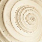 Αφηρημένη σπείρα σαλιγκαριών Στοκ Εικόνες