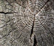 Αφηρημένη σύσταση υποβάθρου του ξύλου Στοκ φωτογραφία με δικαίωμα ελεύθερης χρήσης