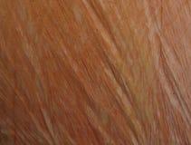 Αφηρημένη σύσταση υποβάθρου του ξύλου Στοκ φωτογραφίες με δικαίωμα ελεύθερης χρήσης