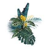 Αφηρημένη τροπική σύνθεση χρώματος με τα φύλλα και τα λουλούδια διανυσματική απεικόνιση