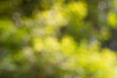 αφηρημένη φύση ανασκόπησης Στοκ φωτογραφία με δικαίωμα ελεύθερης χρήσης