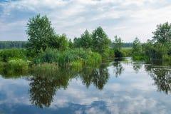 Αφηρημένη φύση Στοκ φωτογραφία με δικαίωμα ελεύθερης χρήσης