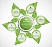 Αφηρημένη φύση infographic Ζωηρόχρωμα φύλλα διανυσματική απεικόνιση