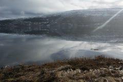 Αφηρημένη χλόη και αντανακλάσεις Στοκ Εικόνες