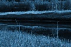 Αφηρημένοι ποταμός και χλόη Στοκ εικόνες με δικαίωμα ελεύθερης χρήσης