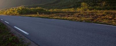 Αφηρημένοι δρόμος και δέντρα Στοκ Φωτογραφίες