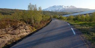 Αφηρημένοι δρόμος και δέντρα Στοκ εικόνα με δικαίωμα ελεύθερης χρήσης