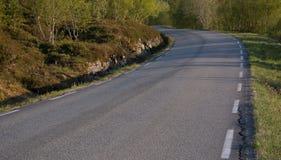 Αφηρημένοι δρόμος και δέντρα Στοκ Φωτογραφία