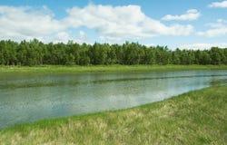 Αφηρημένοι χλόη και ποταμός Στοκ εικόνα με δικαίωμα ελεύθερης χρήσης