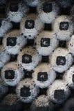 Αφηρημένος δίσκος εγγράφου αυγών Στοκ εικόνες με δικαίωμα ελεύθερης χρήσης