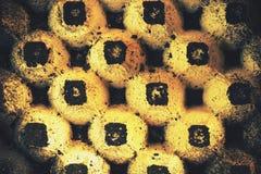 Αφηρημένος δίσκος εγγράφου αυγών Στοκ Εικόνα