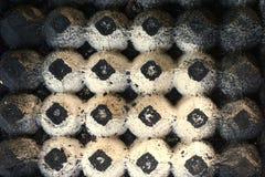 Αφηρημένος δίσκος εγγράφου αυγών Στοκ φωτογραφία με δικαίωμα ελεύθερης χρήσης
