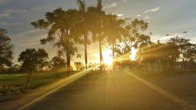 αφηρημένος θερινός ήλιος άνοιξης ακτίνων ανασκοπήσεων Στοκ Φωτογραφίες