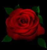 αφηρημένος κόκκινος αυξή&thet Στοκ φωτογραφία με δικαίωμα ελεύθερης χρήσης