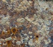 αφηρημένος παλαιός σκουριασμένος μετάλλων ανασκόπησης Στοκ Εικόνες