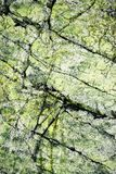 Αφηρημένος πράσινος βράχος με τις ρωγμές Στοκ Φωτογραφίες