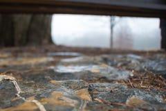 Αφηρημένος πυροβολισμός υγρά flagstones κάτω από έναν πάγκο πάρκων Στοκ Φωτογραφίες