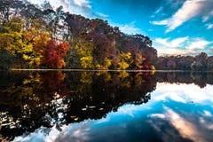 αφηρημένος φθινοπώρου φωτεινός χρωμάτων πτώσης κόκκινος ημι προτύπων φύλλων συμπαθητικός Στοκ Εικόνες