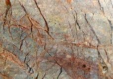 Αφηρημένος φυσικός μαρμάρινος γραπτός σχεδίων για το υπόβαθρο Στοκ Εικόνες