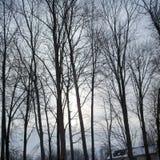 αφηρημένος fractal χειμώνας ουρανού εικόνας Στοκ εικόνα με δικαίωμα ελεύθερης χρήσης