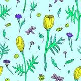 Αφηρημένο άνευ ραφής floral σχέδιο με τις τουλίπες, τα φύλλα και τα χορτάρια Συρμένα χέρι χρωματισμένα λουλούδια στο ανοικτό μπλε διανυσματική απεικόνιση