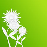 Αφηρημένο άσπρο λουλούδι εγγράφου Gerbera πράσινη κοιλάδα άνοιξη κρίνων φύλλων υάκινθων καρτών ανασκόπησης Στοκ φωτογραφία με δικαίωμα ελεύθερης χρήσης