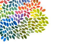 Αφηρημένο ακρυλικό και χρωματισμένο κτυπήματα υπόβαθρο βουρτσών watercolor Στοκ Εικόνες