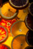 αφηρημένο ανασκόπησης εσπεριδοειδών στενό στούντιο φετών φωτογραφίας καρπού πορτοκαλί επάνω Στοκ φωτογραφία με δικαίωμα ελεύθερης χρήσης