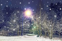 αφηρημένο ανασκόπησης Χριστουγέννων σκοτεινό διακοσμήσεων σχεδίου λευκό αστεριών προτύπων κόκκινο Snowflakes εμπίπτουν στο χειμερ Στοκ Εικόνες