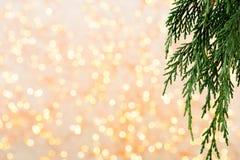 αφηρημένο ανασκόπησης Χριστουγέννων σκοτεινό διακοσμήσεων σχεδίου λευκό αστεριών προτύπων κόκκινο Αστέρι Χριστουγέννων και καπέλο Στοκ φωτογραφία με δικαίωμα ελεύθερης χρήσης