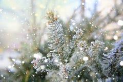 αφηρημένο ανασκόπησης Χριστουγέννων σκοτεινό διακοσμήσεων σχεδίου λευκό αστεριών προτύπων κόκκινο Συρμένο επίδραση χιόνι Στοκ Εικόνα