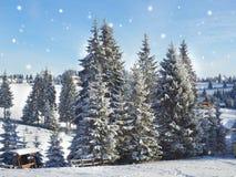 αφηρημένο ανασκόπησης Χριστουγέννων σκοτεινό διακοσμήσεων σχεδίου λευκό αστεριών προτύπων κόκκινο νέο έτος ανασκόπησης Χειμερινές Στοκ εικόνα με δικαίωμα ελεύθερης χρήσης