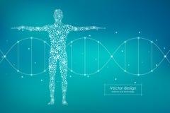Αφηρημένο ανθρώπινο σώμα με το DNA μορίων Έννοια ιατρικής, επιστήμης και τεχνολογίας επίσης corel σύρετε το διάνυσμα απεικόνισης απεικόνιση αποθεμάτων