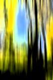 αφηρημένο δάσος απεικόνιση αποθεμάτων