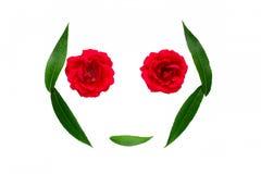 Αφηρημένο θερινό σύμβολο - πρόσωπο των φύλλων και των λουλουδιών Άσπρη ανασκόπηση απομονωμένο έννοια λευκό φύσης Στοκ Εικόνα
