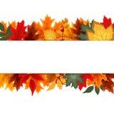 Αφηρημένο διανυσματικό υπόβαθρο απεικόνισης με το μειωμένο φθινόπωρο Στοκ Εικόνα
