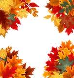 Αφηρημένο διανυσματικό υπόβαθρο απεικόνισης με το μειωμένο φθινόπωρο Στοκ Εικόνες