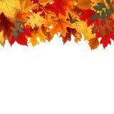 Αφηρημένο διανυσματικό υπόβαθρο απεικόνισης με το μειωμένο φθινόπωρο Στοκ φωτογραφία με δικαίωμα ελεύθερης χρήσης