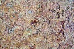 Αφηρημένο καφετί υπόβαθρο τοίχων Στοκ Εικόνες