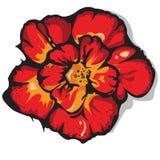 Αφηρημένο κόκκινο λουλούδι με τη μαύρη περίληψη Στοκ εικόνες με δικαίωμα ελεύθερης χρήσης