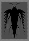 Αφηρημένο μη αναγνωρισμένο έντομο Στοκ φωτογραφία με δικαίωμα ελεύθερης χρήσης