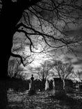 Αφηρημένο νεκροταφείο, δέντρο και σεληνόφωτο στοκ εικόνες με δικαίωμα ελεύθερης χρήσης
