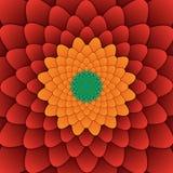 Αφηρημένο λουλουδιών mandala διακοσμητικό τετράγωνο υποβάθρου σχεδίων κόκκινο Στοκ φωτογραφία με δικαίωμα ελεύθερης χρήσης