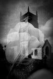 Αφηρημένο λουλούδι τουλιπών με τη θολωμένη παλαιά αγγλική εκκλησία Στοκ Εικόνες