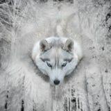 Αφηρημένο πορτρέτο σκυλιών στο δασικό υπόβαθρο Στοκ Εικόνες