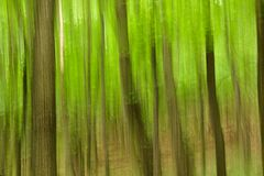 Αφηρημένο πράσινο δάσος Στοκ εικόνες με δικαίωμα ελεύθερης χρήσης